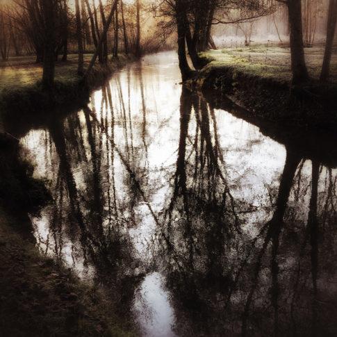 photo artistique cours d'eau entre les arbres nuit