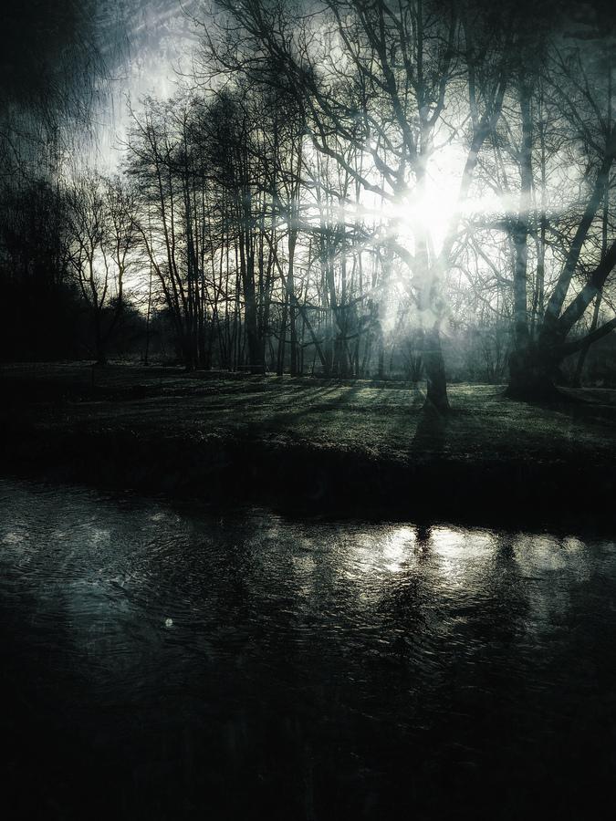 photo artistique nature cours d'eau et forêt sombre