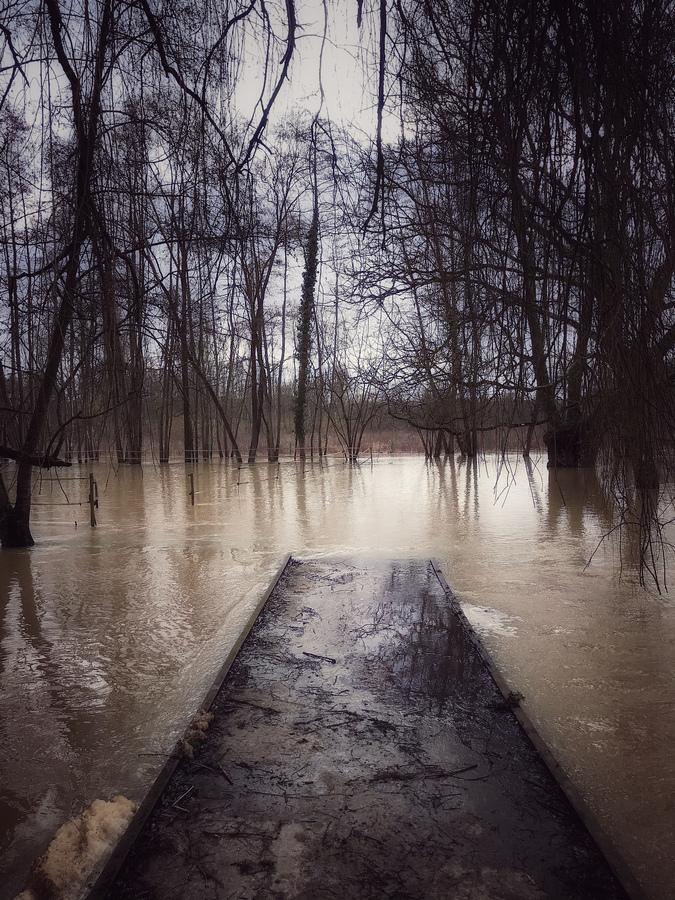 photo artistique nature pont rivière inondé