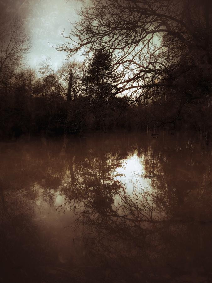 photo artistique nature cours d'eau boue