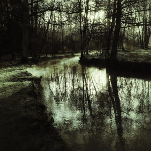 photo artistique nature rivière brouillard vert